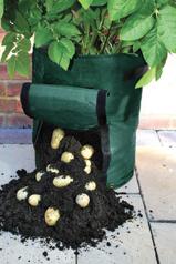 potato-bag2