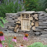 Aug23_insect hotel