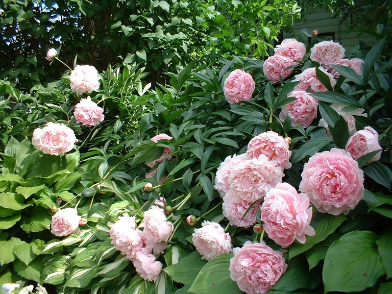 June22_blog4